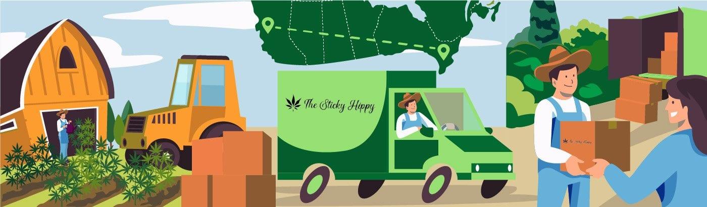 The Stick Hippy. Canadian Farm To Edibles Cannabis CBD Oil & shrooms