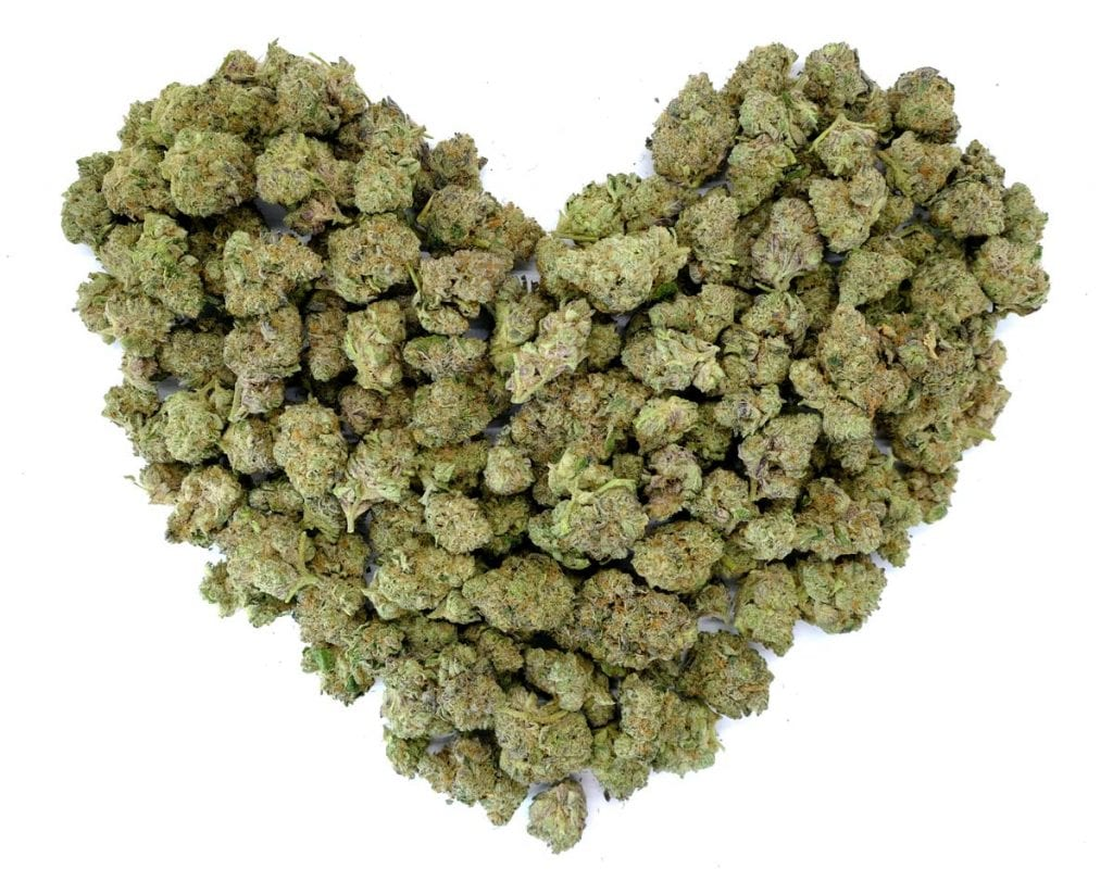 heart shaped flower buds